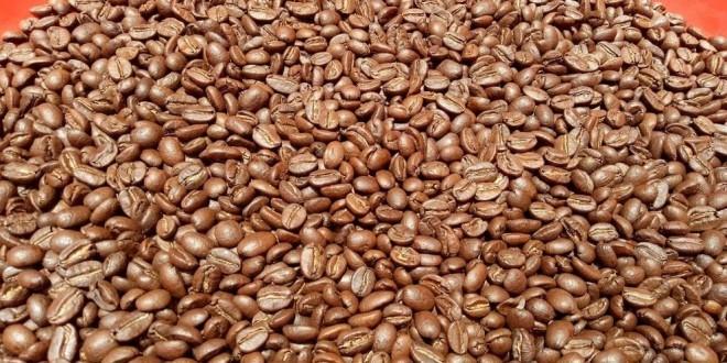 Chuyên cung cấp cà phê sạch