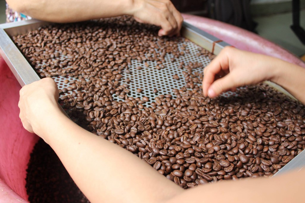 Lựa cà phê