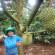 Trồng xen cây ăn quả trong vườn cà phê