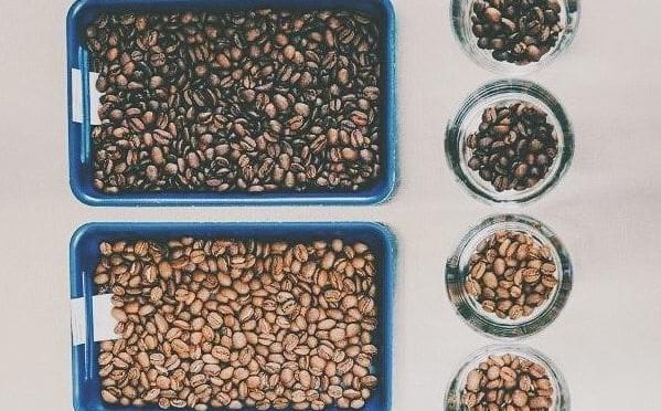 Decaf cà phê